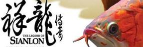 桂林水族批发市场|桂林水族馆|桂林龙鱼